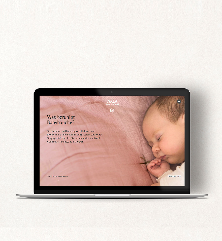 WALA Arzneimittel Microsite - Projekt der Internetagentur NO TINS Gmbh